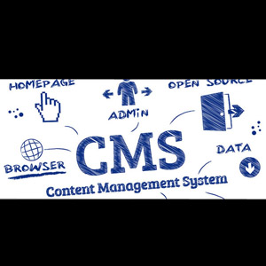 Using a WordPress CMS To Develop Your Website